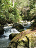 Habitats of Costa Rica
