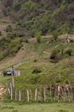 Masooleh Region