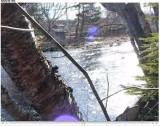 looking upstream towards the bridge