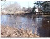 view across the stream