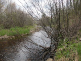 Round Hill Brook - east side of property - upstream view