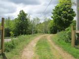 out-lane-28-05-2010-2.jpg
