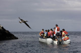 Looking for the birds, Rabida Island