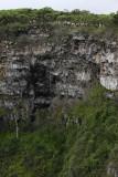 Los Gemellos, Santa Cruz Island