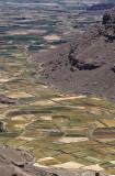 Fertile valley