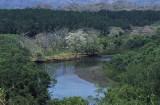 Rio Nosara