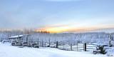 Eleské Winter