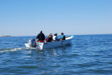 WE HEAD OUT INTO THE BAY TO FIND THE MIGHTY GREY WHALES..