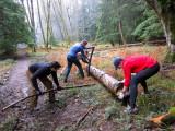 Trail Work - 1.31.2010