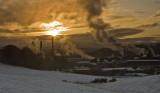 Golden Winter Solstice
