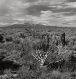 Rio Grande Valley, New Mexico, 1997