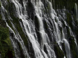 GALLERY:: Burney Falls, California:: September,  2008