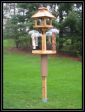 New feeder setup