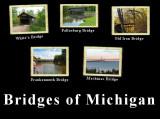 Bridges of Michigan