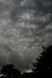 I think it could rain