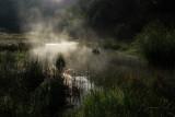 Steaming hot springs