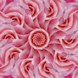 Rose 5glow.jpg