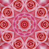 Rose 4glow.jpg