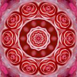 Rose 3glow.jpg