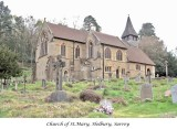 Saxon and Norman Churches in Surrey