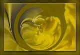 filters-168.jpg