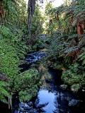 cascade-small01.jpg
