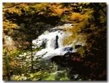 ParrySound_waterfall-1.jpg