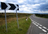 Out and about with the Ixus: The North Yorkshire Betty's Loop