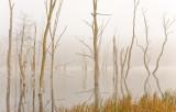 Kimseys Run Lake, Lost River, WV