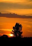 Sunset  For Bruna