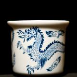 Friendly Looking Blue Dragon