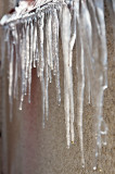 ACTION: Melting Icicles