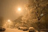 Last Night Snowfall