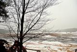 Echo Ponds In Winter