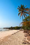 Beach In Jambiani