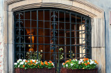 Window With Flowers And Grating