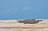 Dhows At Low Tide