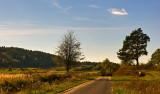 Road Near Topolcza