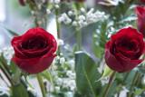 Roses @f5.6 GF1