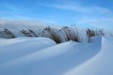 Snow-dunes