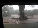 Camp & Travel