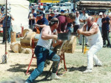 David and Peter race a chainsaw,--and win.