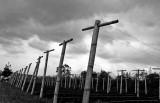poles, Java