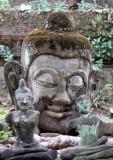 CHIANG MAI - WAT UMON - CHRISTMAS IN THAILAND TRIP 2008 (12).JPG