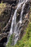 BELIZE - PINE RIDGE WATERFALLS.jpg