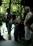 ECUADOR - AMAZONA - RAINFOREST INTERIOR - FLOODED FOREST WALK.jpg