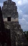 GUATEMALA - TIKAL C.jpg