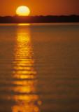 PANTANAL - SUNSET B.jpg