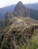 PERU - MACCHU PICCHU C.jpg