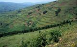 RWANDA COUNTRYSIDE 1.jpg